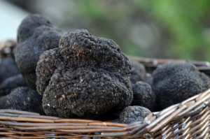 The Black Diamond Truffle