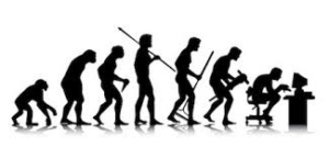 Human Evolution to Date